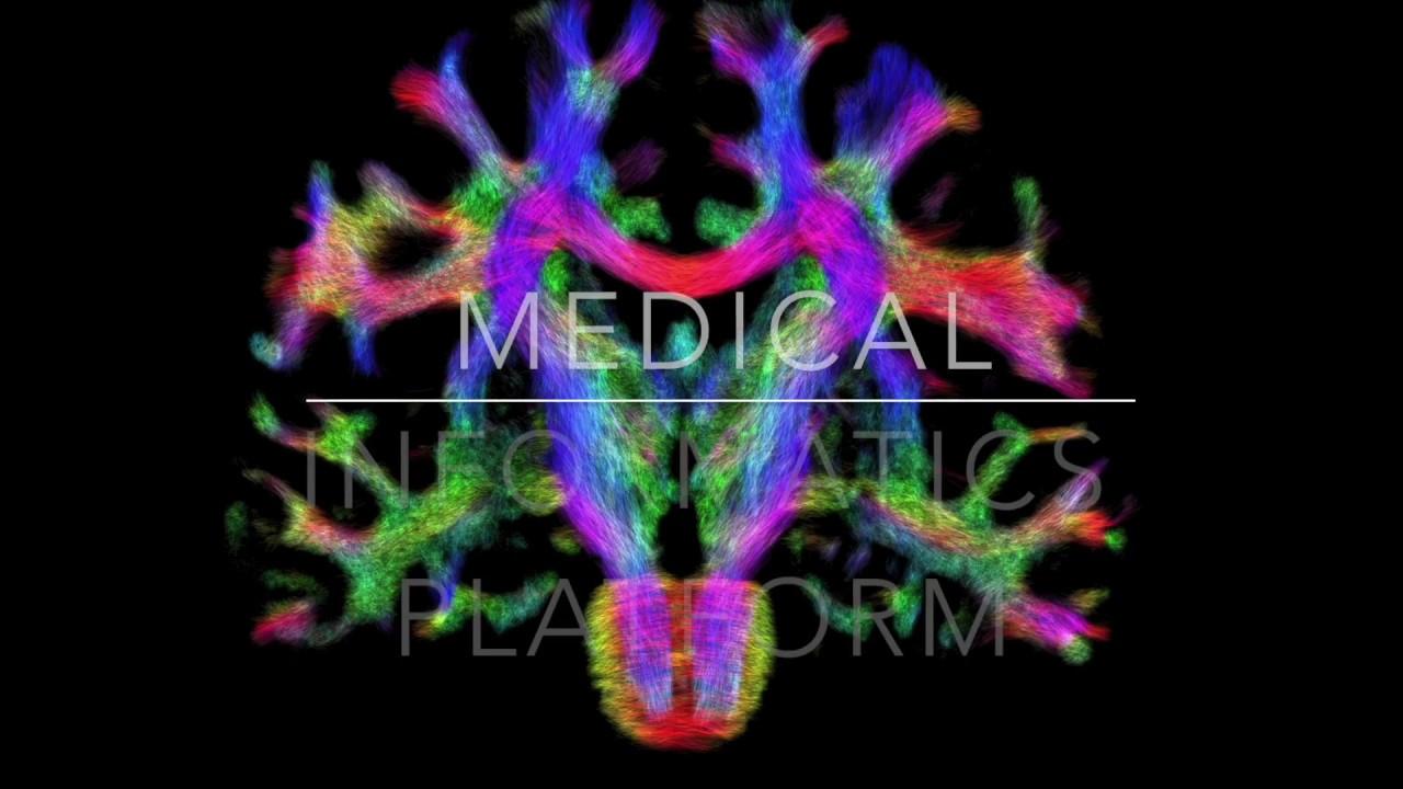 Medical Informatics Platform