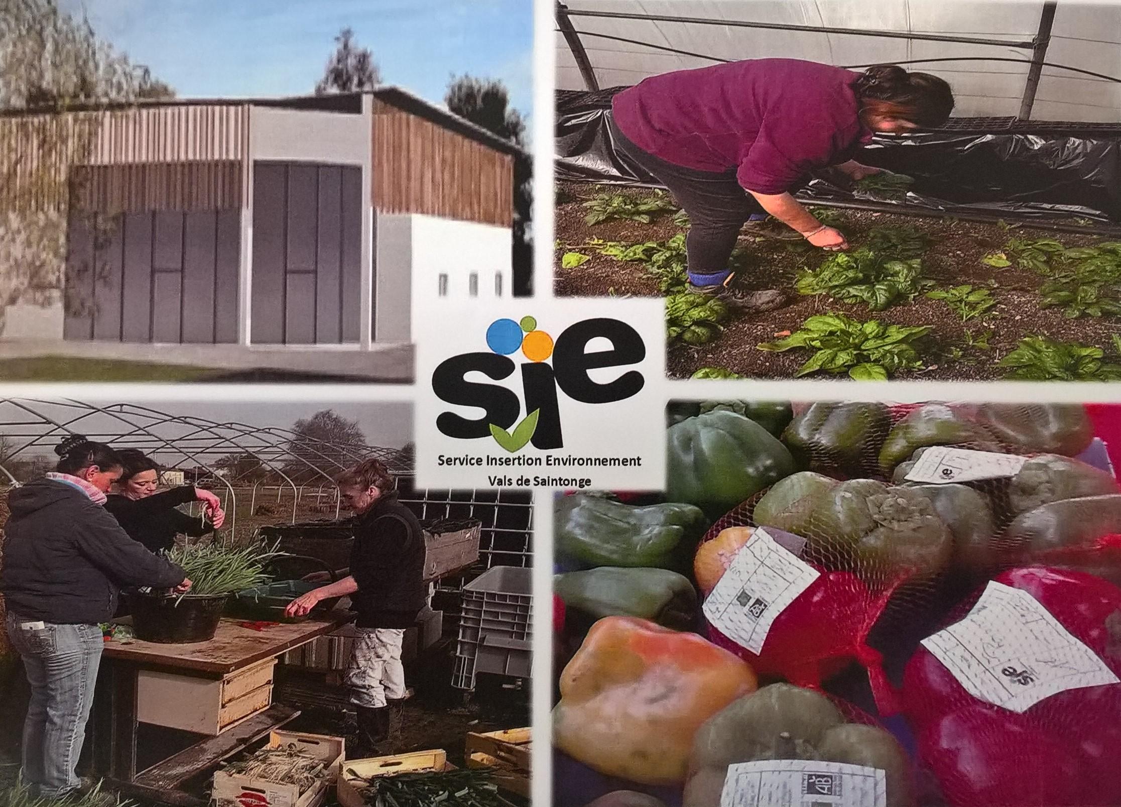 Un bâtiment au service de la Bio Solidarité